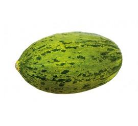 melón piel de sapo f1