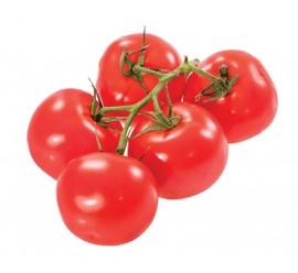 tomate gordo rama