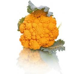 coliflor amarilla