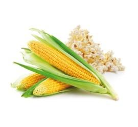 maíz palomitas