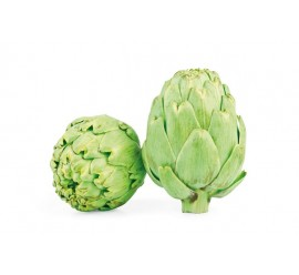 alcachofa verde
