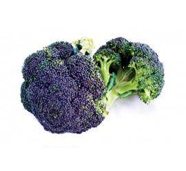 brocoli morado